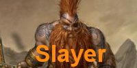 Slayerarmee der Zwerge - Warhammer Fantasy und Kings of War